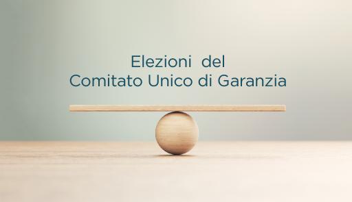 tavola di legno in equilibrio su pallina di legno, frase: elezioni Comitato Unico di Garanzia