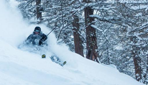 Sciatore che effettua una discesa in neve fresca