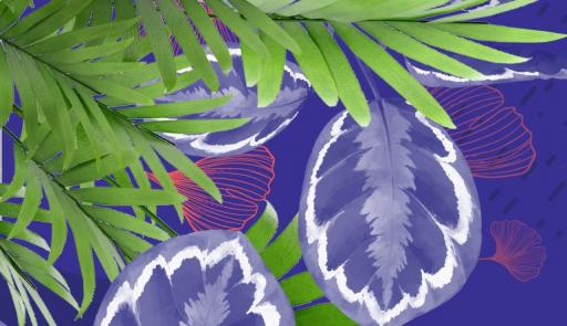 In grafica una foglia di palma su sfondo azzurro