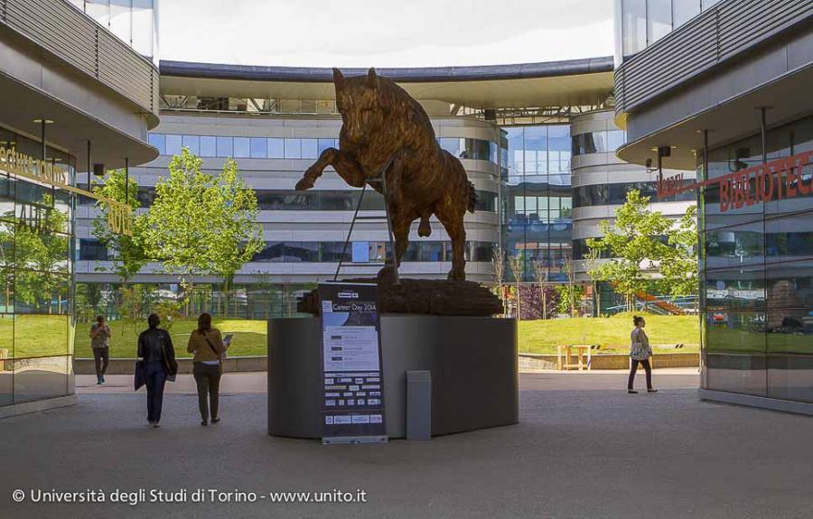 Campus Luigi Einaudi: il toro