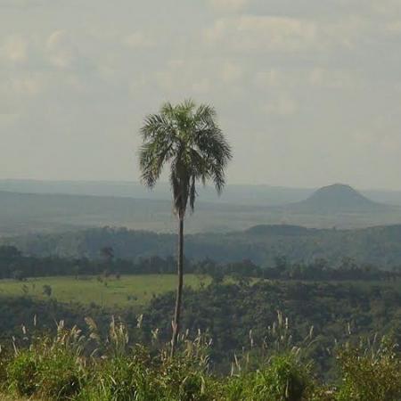Paraguay - Comunitá Pai Tavytera di Cerro Guasú