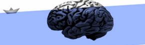 Disegno del cervello - logo del Premio Fasolo