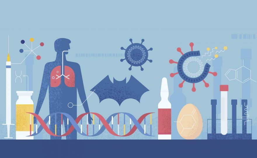 Diverse figure da laboratorio: modelline corpo umano, ampolle, virus..
