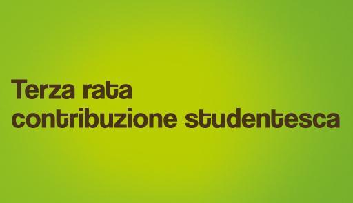 Scritta TERZA RATA CONTRIBUZIONE STUDENTESCA su sfondo verde