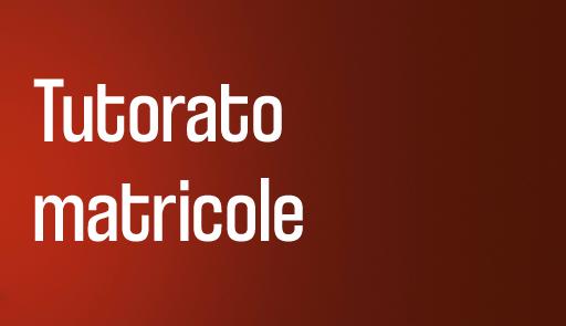 grafica immatricolazioni - Tutorato matricole