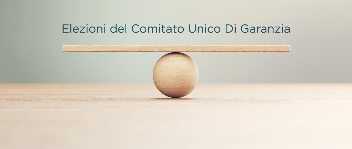 tavola di legno in equilibrio su pullina di legno, frase: elezioni Comitato Unico di Garanzia